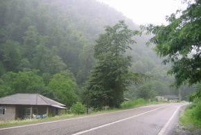 مازندران با هوای بارانی به استقبال سال جدید می رود