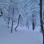 برف در مازندران