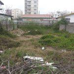 فروش زمین در مازندران