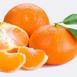 قیمت نارنگی شمال