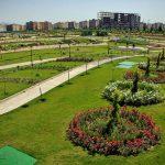 پارک پاک