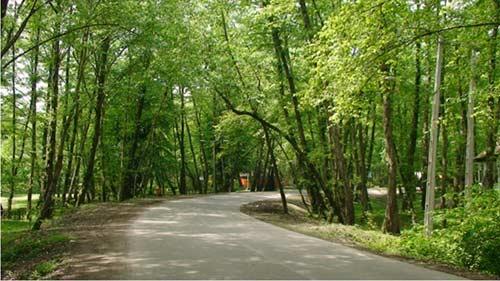 پارک-جنگلی-کشپل